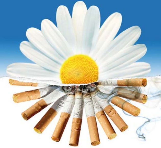 Картинки по запросу картинки отказ от курения